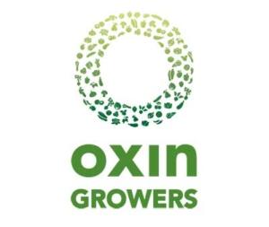oxin komkommerbedrijf willems ewijk