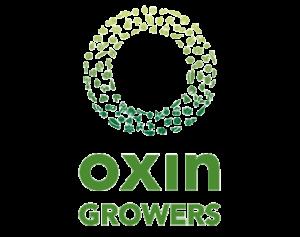 oxin komkommerbedrijf willems in ewijk